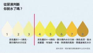 【健康】5 大身體指標,提醒你水喝夠了沒