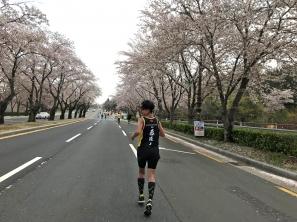 傳說中最浪漫的賽道,「櫻花樹下」之21.0975公里