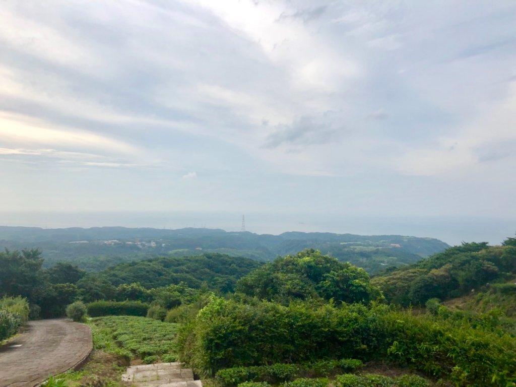 2019-07-09新北石門茶山步道_627052