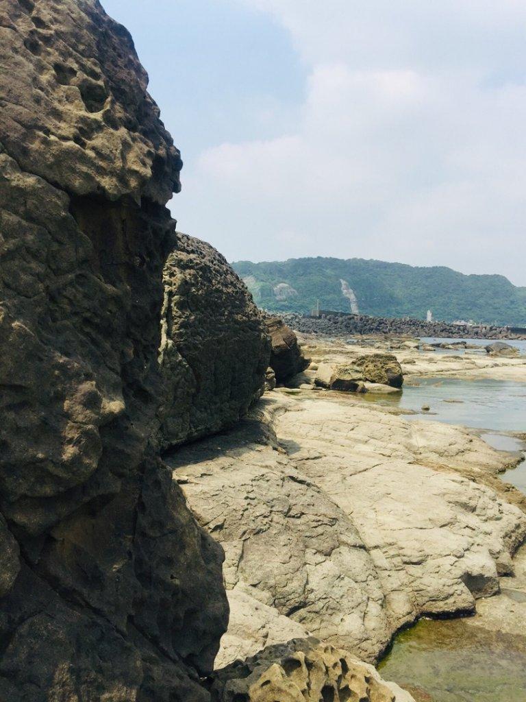 八斗子(賞百合趣)_571930