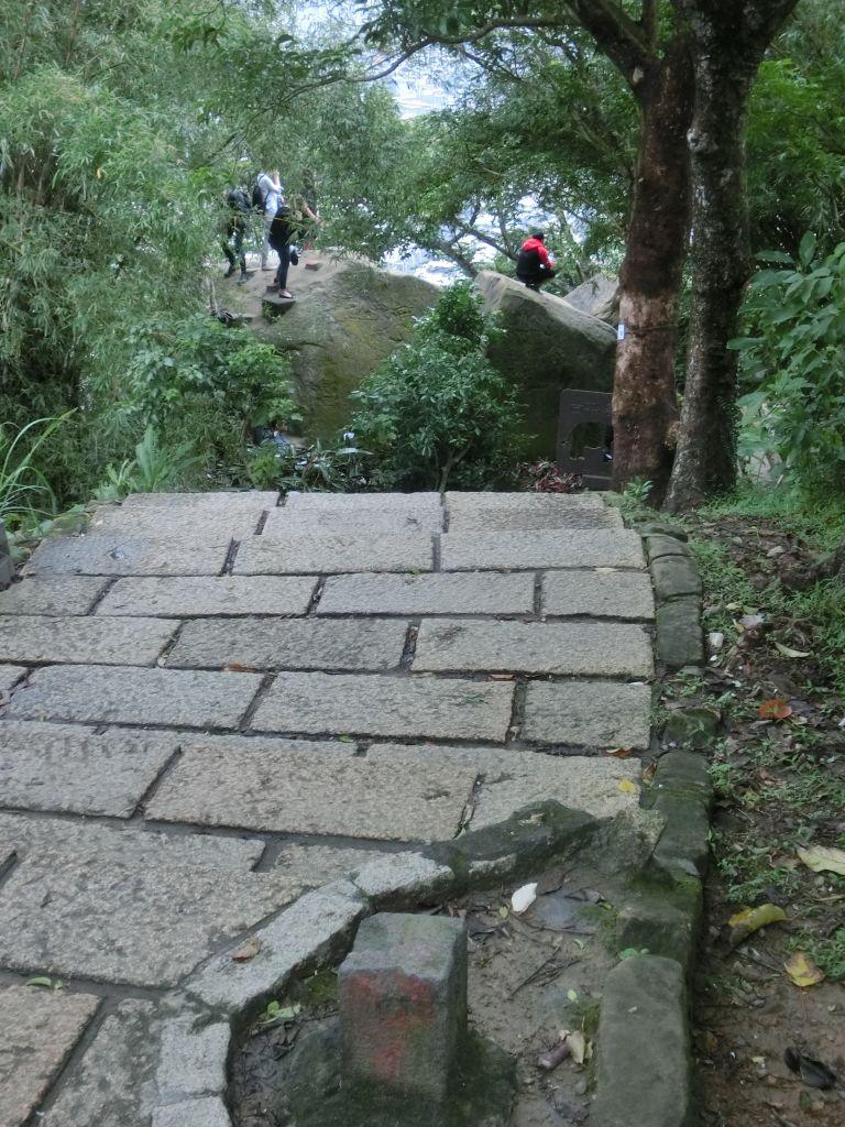 豹山溪步道.獅山.象山.和興炭坑_199038