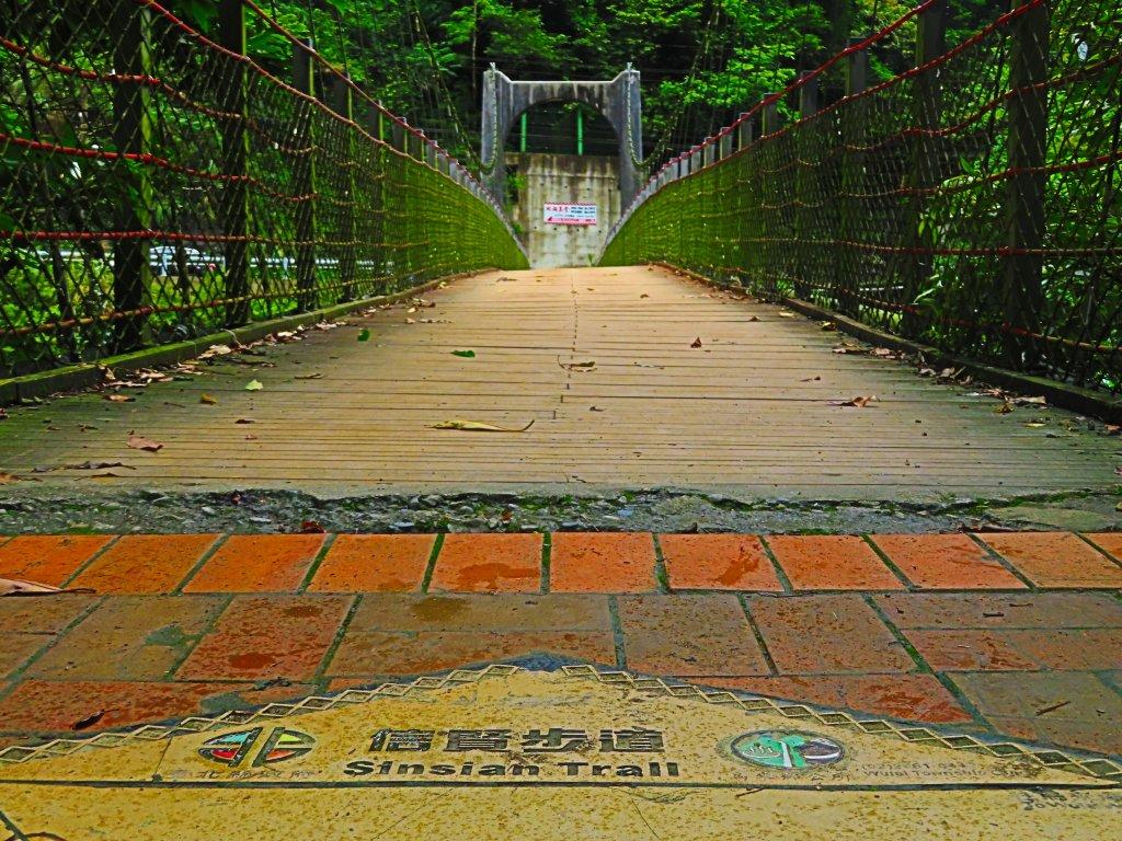 夏季清涼步道:烏來內洞、信賢森林步道_588293