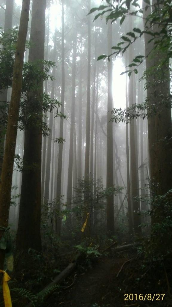 20160827新竹五峄民都有山_61778