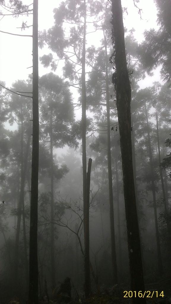 20160214新竹北埔金龜岩,猴洞步道_30983