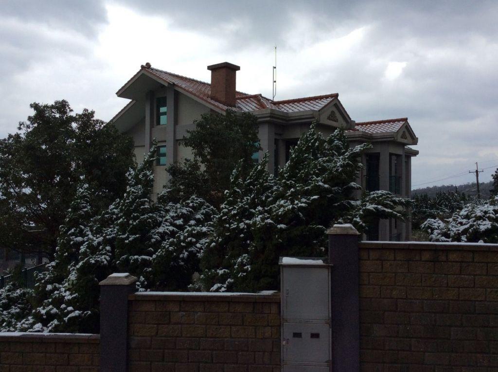陽明山の雪_172100