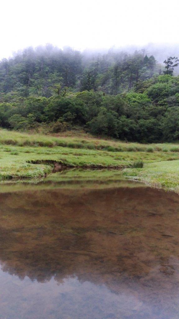 松蘿湖_584243