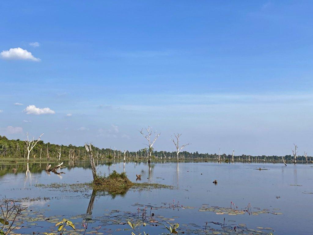 柬埔寨自由行--20200126_839625