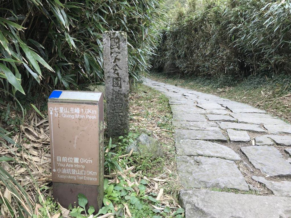陽明山東西大縱走 2018_623264