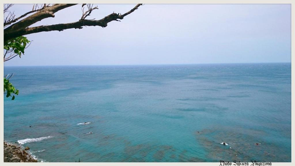 【春夏之際】阿朗壹古道,又稱阿塱壹古道,台灣現存的古道之一。_17353