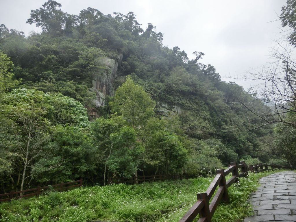 豹山溪步道.獅山.象山.和興炭坑_198993