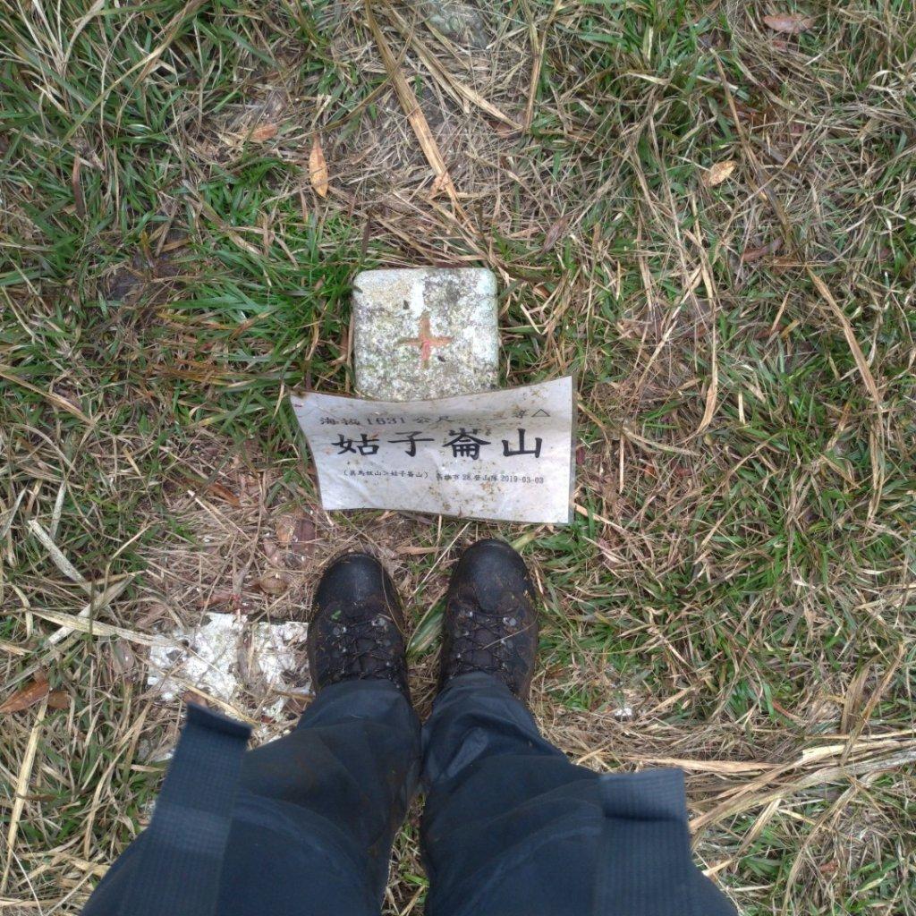 水森林姑子崙山---浸水營國家步道_835755