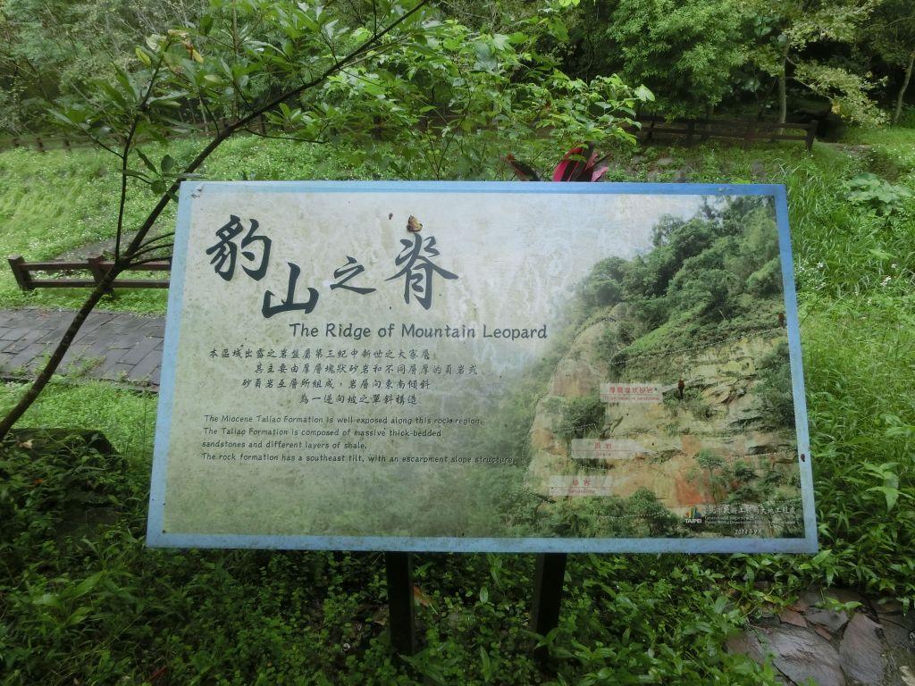 豹山溪步道.獅山.象山.和興炭坑_198978