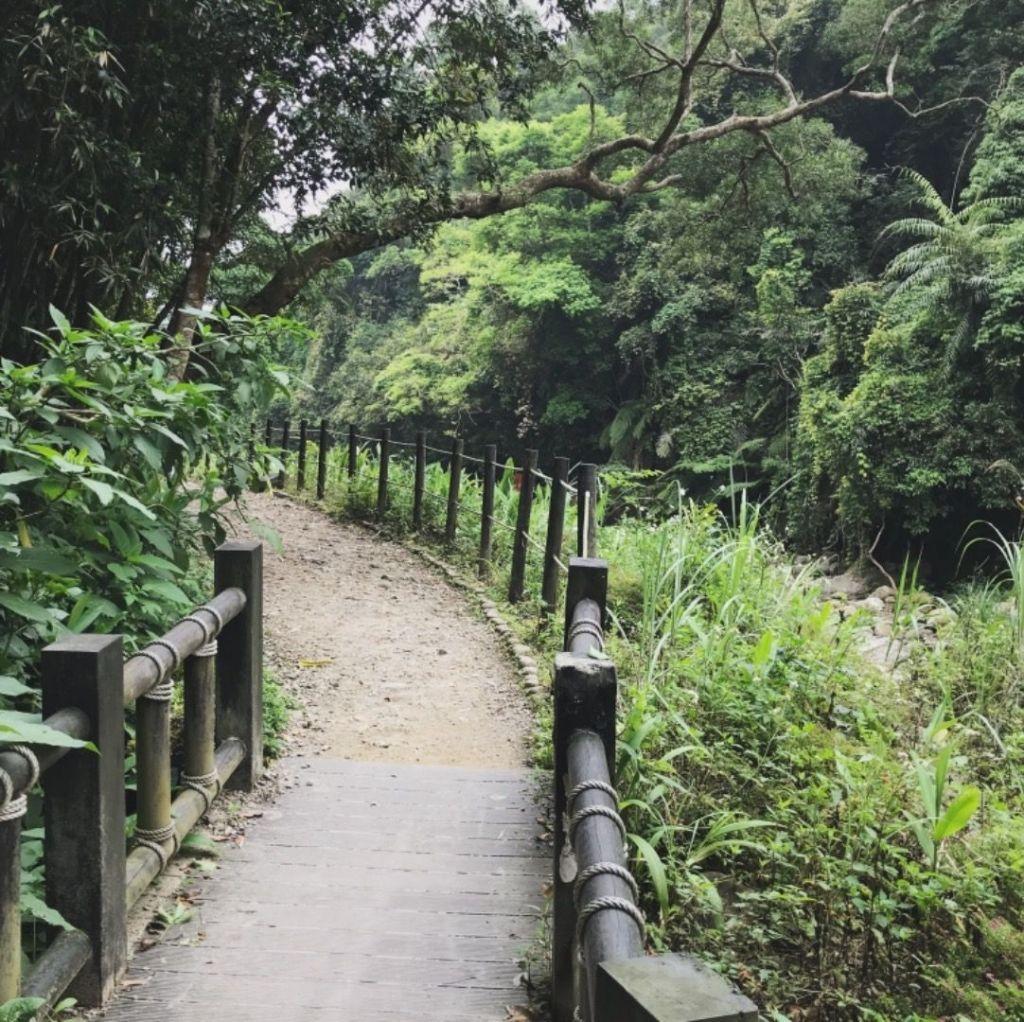 蓬萊溪護魚步道_323933