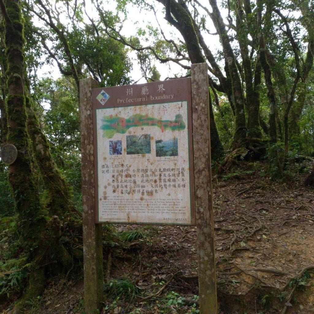 水森林姑子崙山---浸水營國家步道_835771