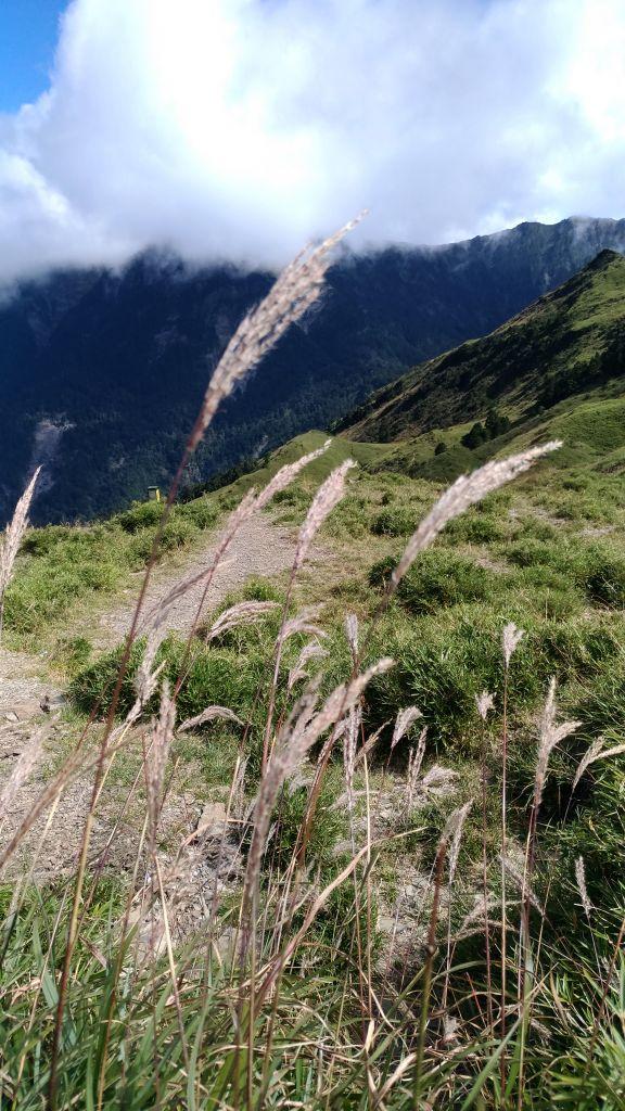 美麗山谷~~小奇萊山!_185149
