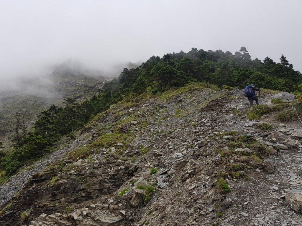 奇萊主峰、奇萊北峰(百岳×13、14)_1048354