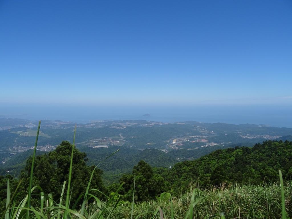 【春夏之際】寶藍艷麗~五分山^^_17429