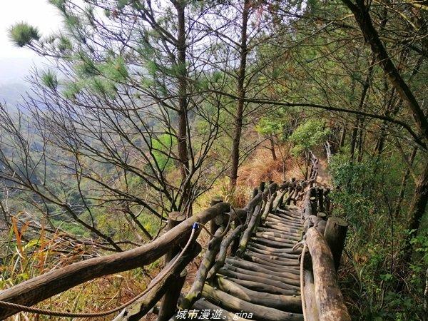 【台中。北屯】台灣百大必訪步道。 大坑四號步道_1338808