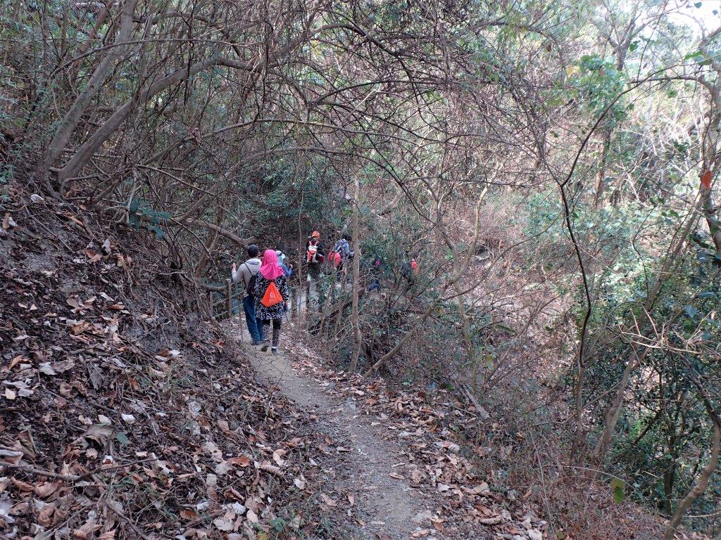 步道巡訪員│浸水營前段步道2月巡訪日誌_931665
