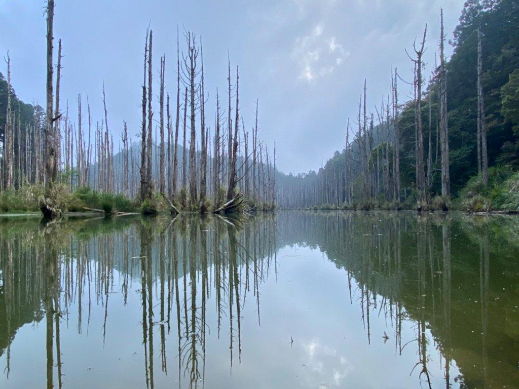 水漾森林_1052616
