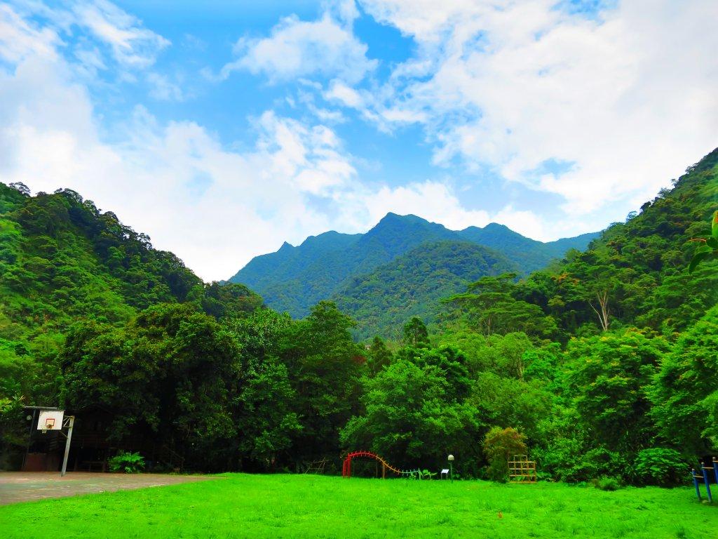 夏季清涼步道:烏來內洞、信賢森林步道_588238