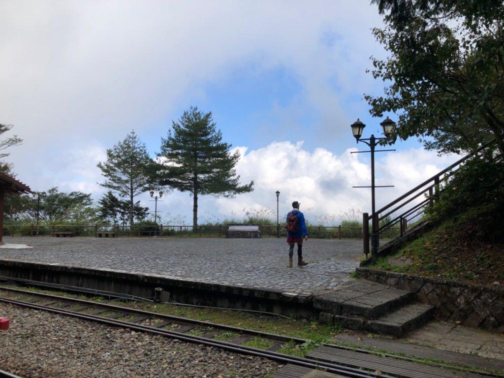 阿里山水山巨木、祝山觀日步道、對高岳步 _726949