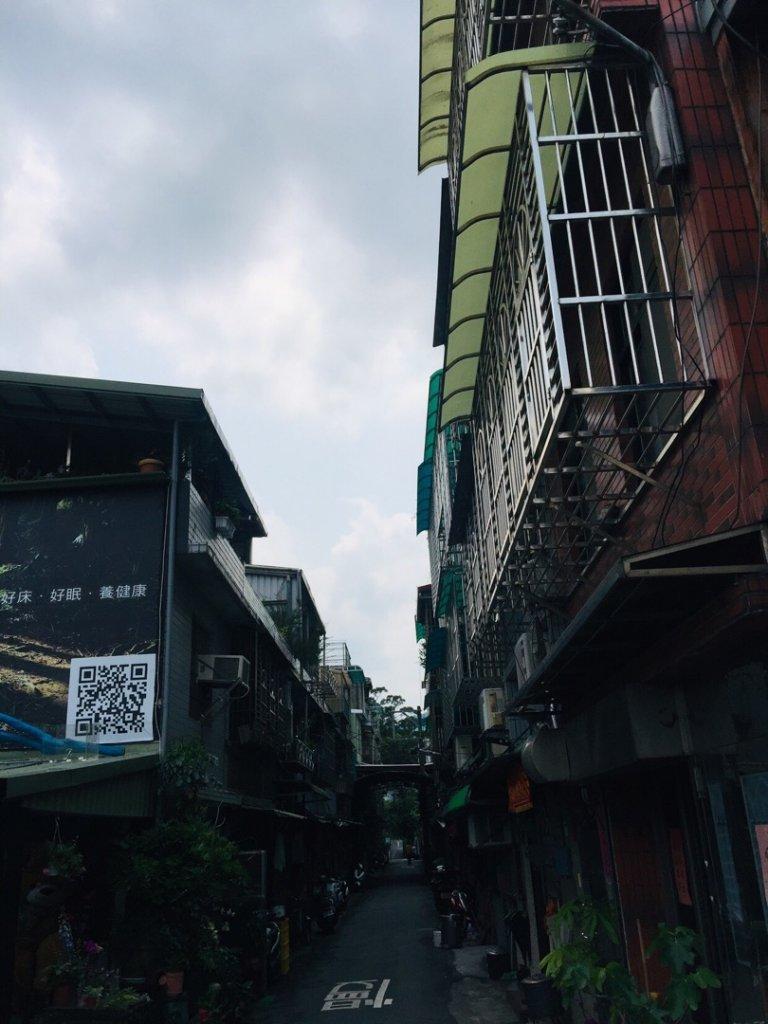 土城四秀賞桐趣_570642