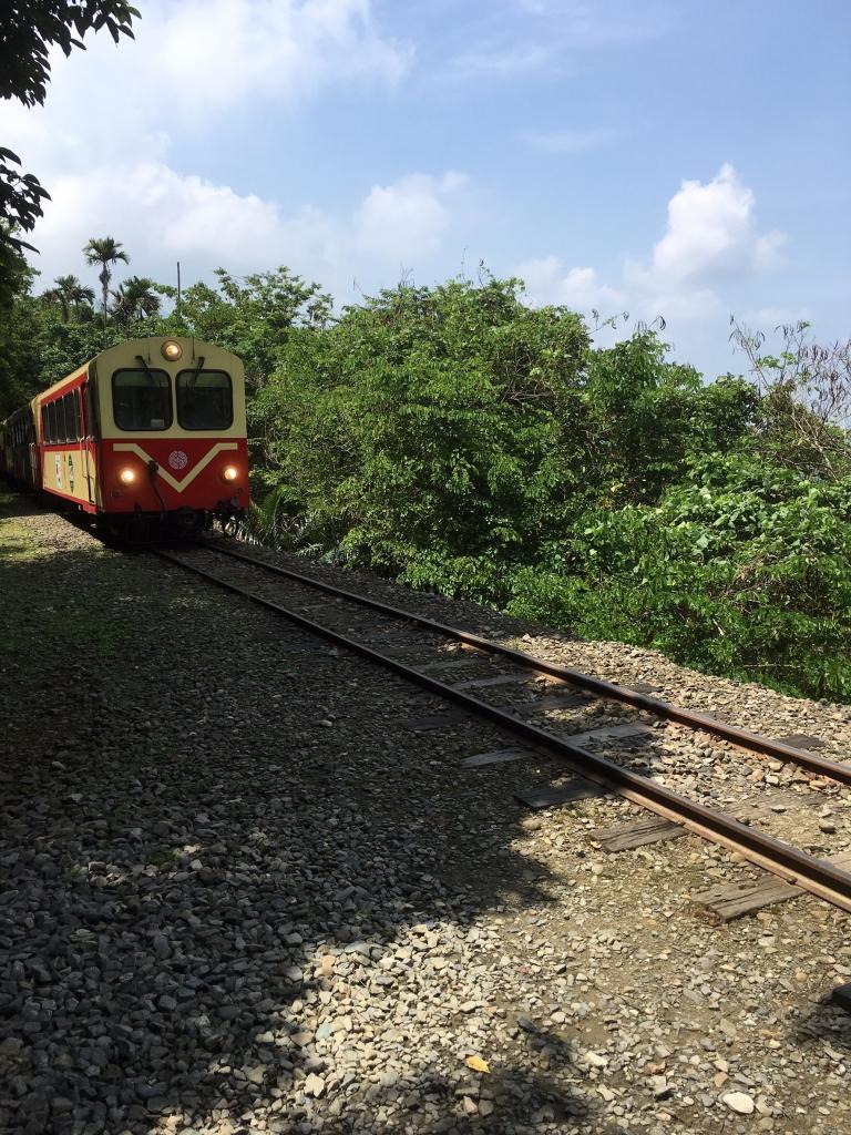 與森林小火車相依的獨立山步道_56915