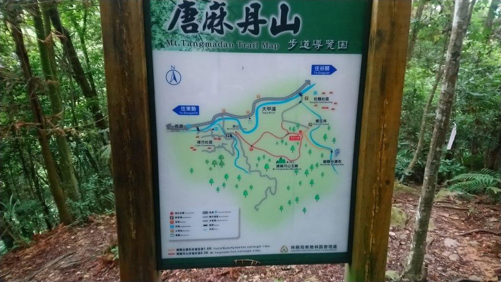 唐麻丹山_620259