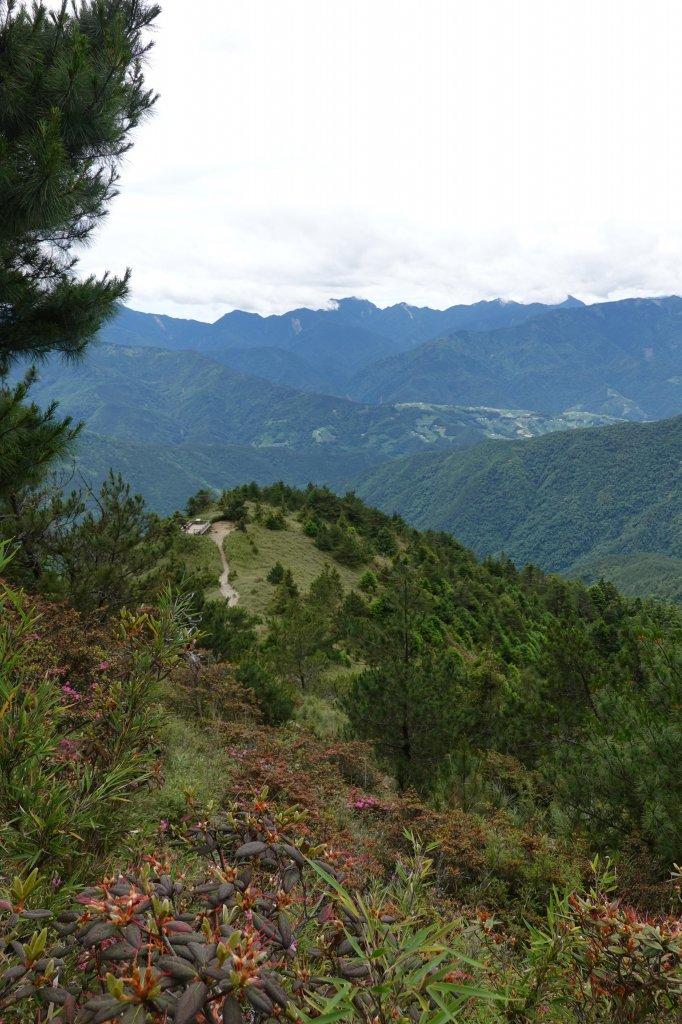 阿興阿賢雪山主峰東峰_626432