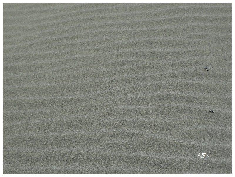 國聖燈塔/極西點_1206418