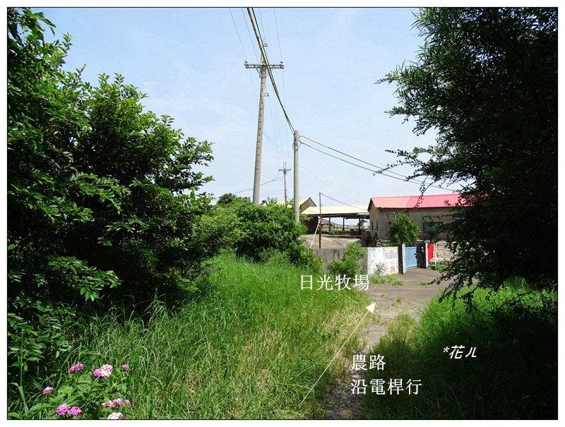 大甲/鐵砧山(小百岳)_631048