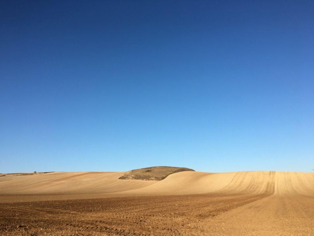 Camino French way _623050