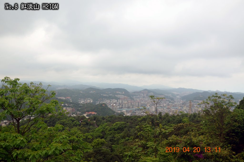 紅淡山_570269