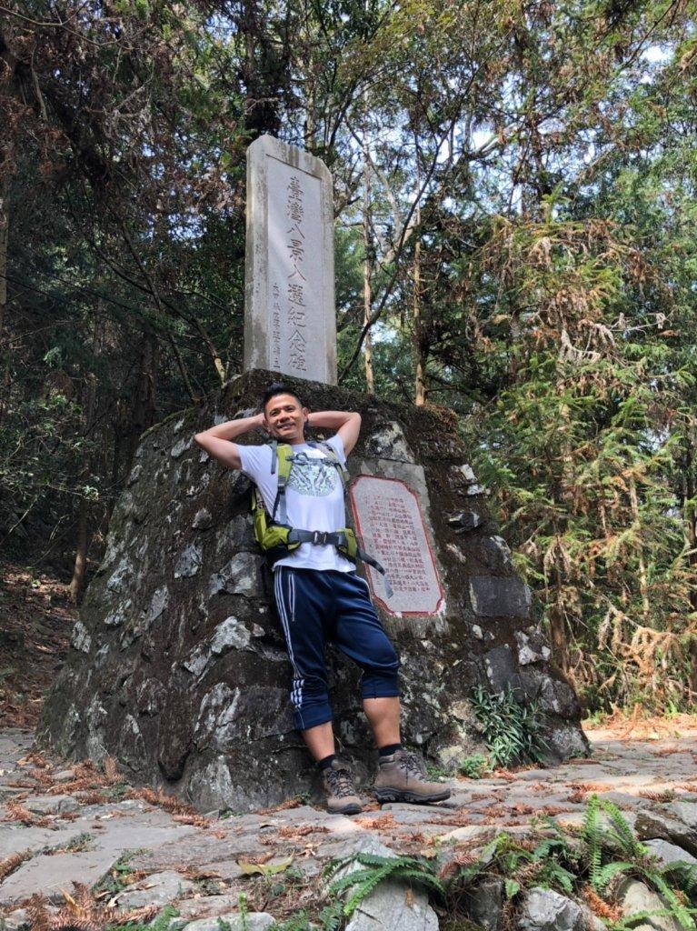 八仙山森林遊樂區【與藍腹鷴漫步在春光裡】_531613