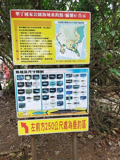 青蛙石海洋遊憩公園濱海步道_764677