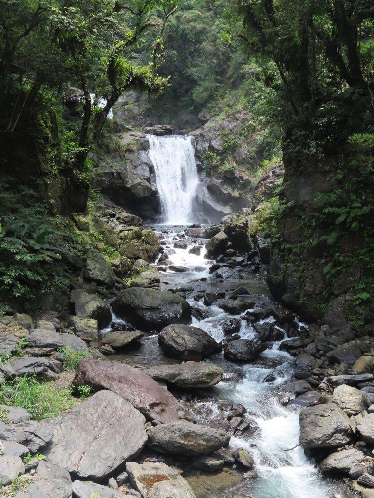 夏季清涼步道:烏來內洞、信賢森林步道_588307