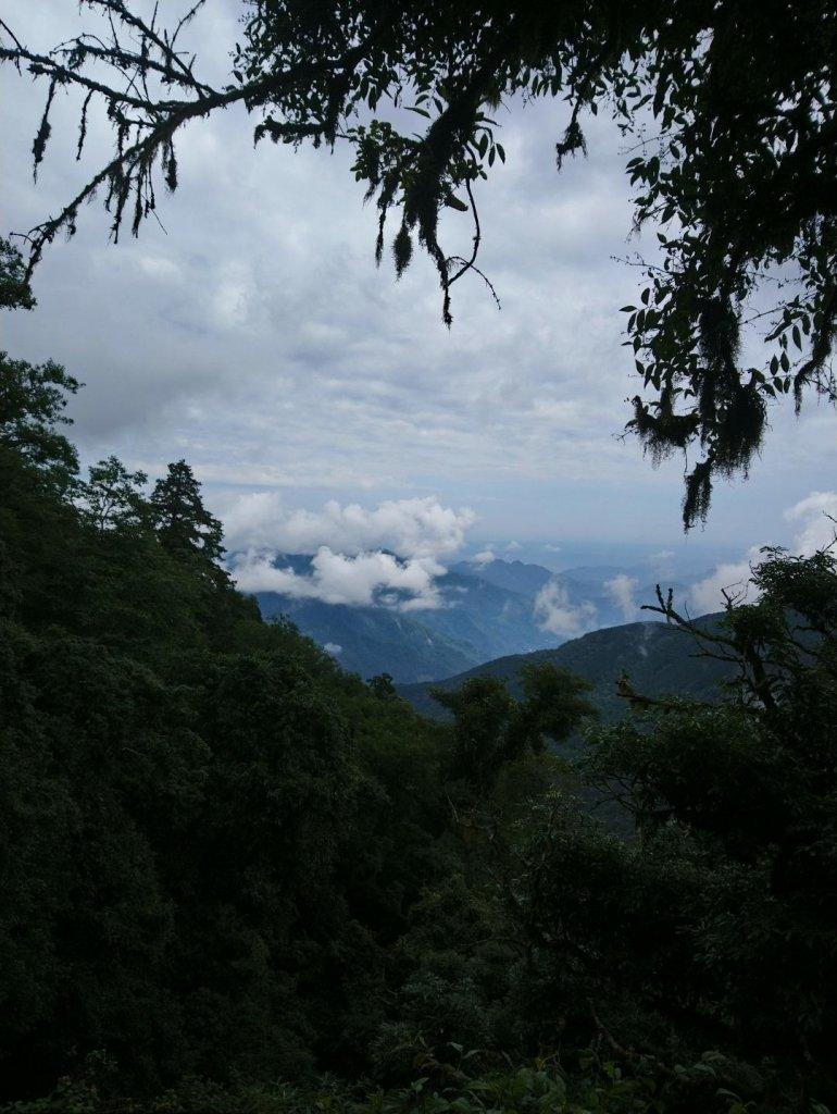 觀霧(榛山,檜山,野馬瞰山,觀霧瀑布)_636048