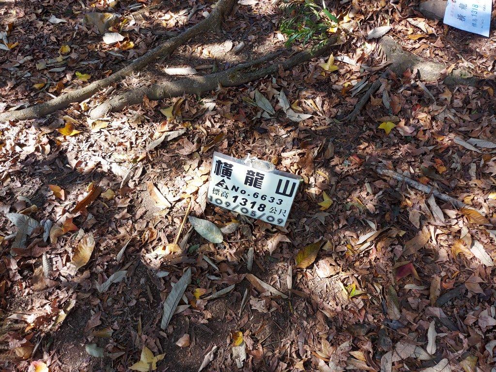 騰龍山 橫龍山北峰 橫龍山 O型_1205423