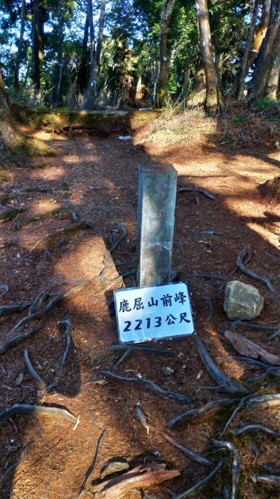 一日【水漾森林-鹿屈山】_1280861