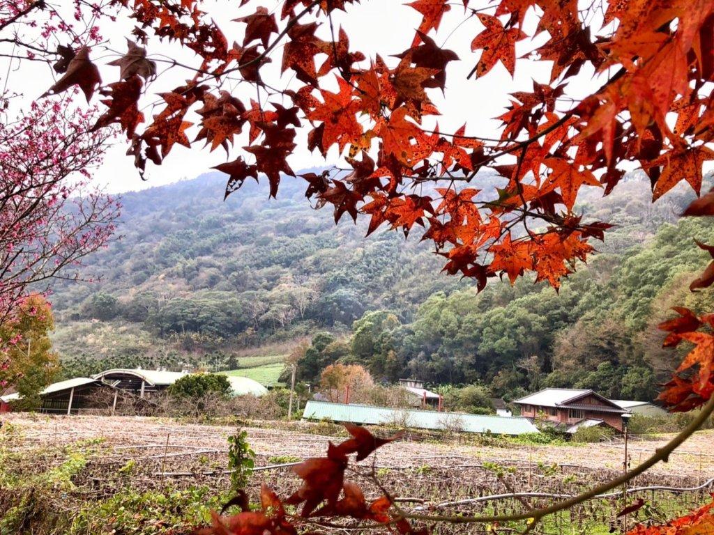 獵人古道 望美山 暸望台 雙龍瀑布二日遊_1230564