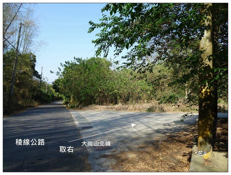 高雄-大崗山(小百岳)_1420618