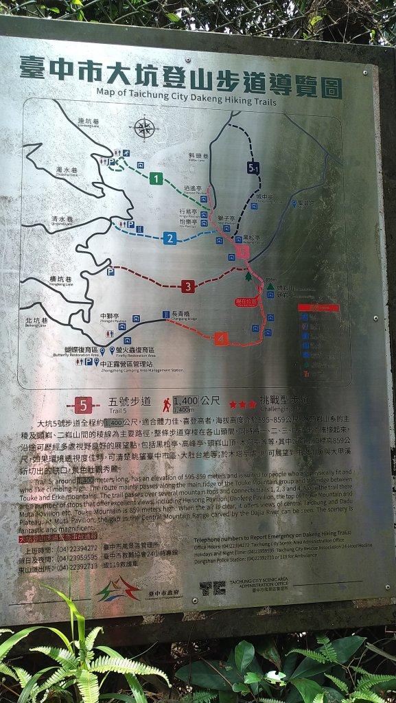 2019.6.30頭嵙山之旅_1422983