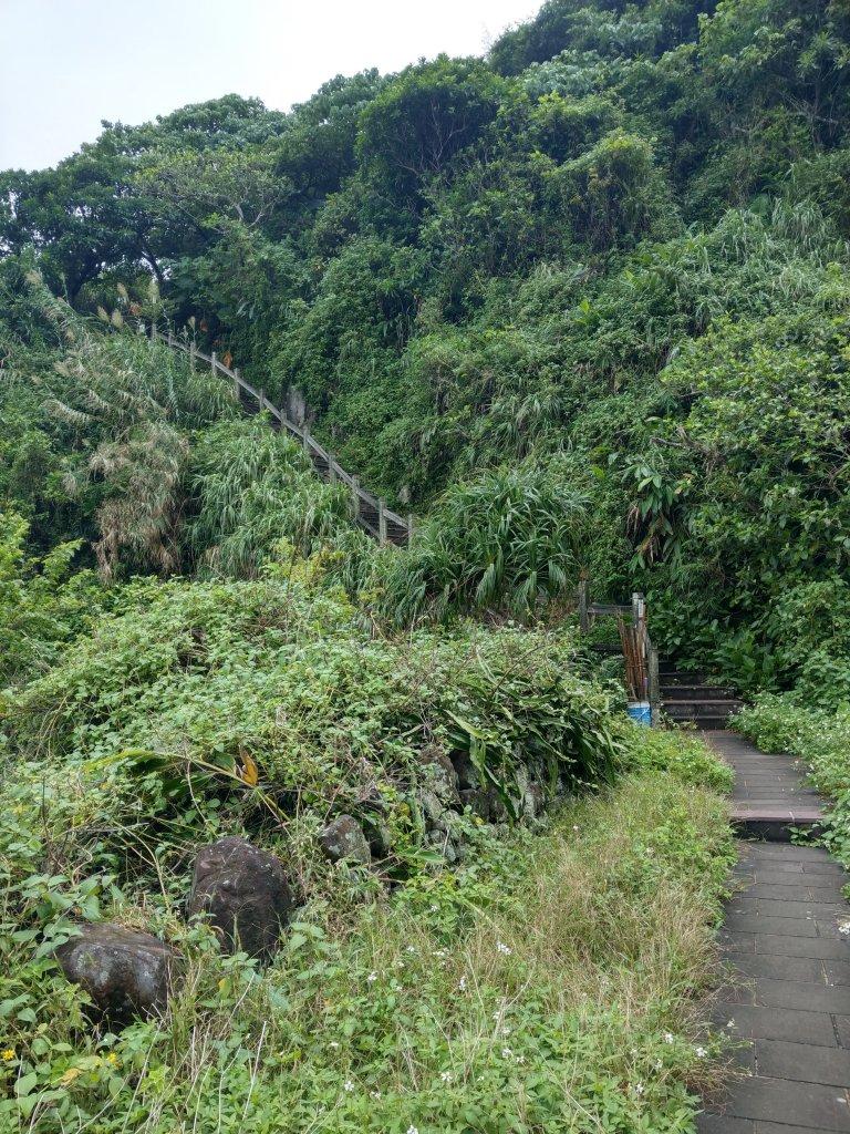 龜山島環湖步道及401高地_705665