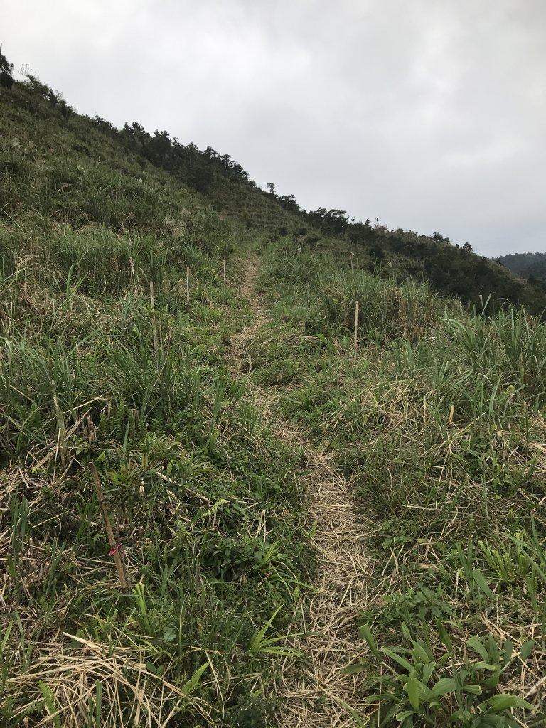 【鵲子山】2019.10.26_717995