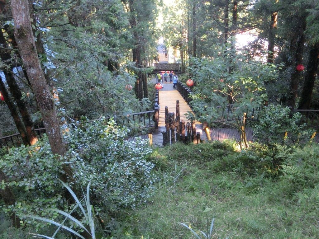 檜木原始林步道_672668