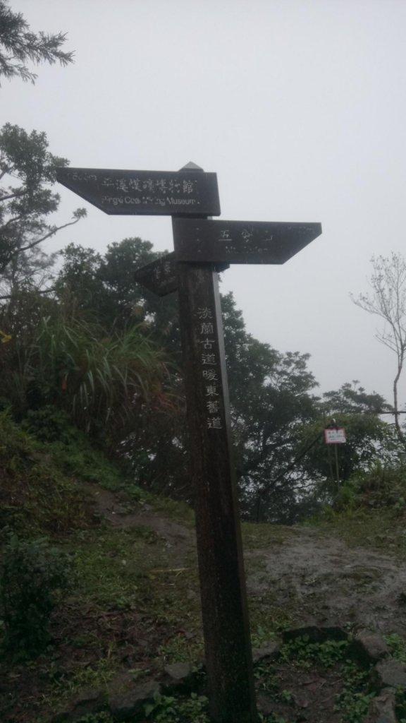 五分山(小百岳)連走頂子寮山及望谷山_528706