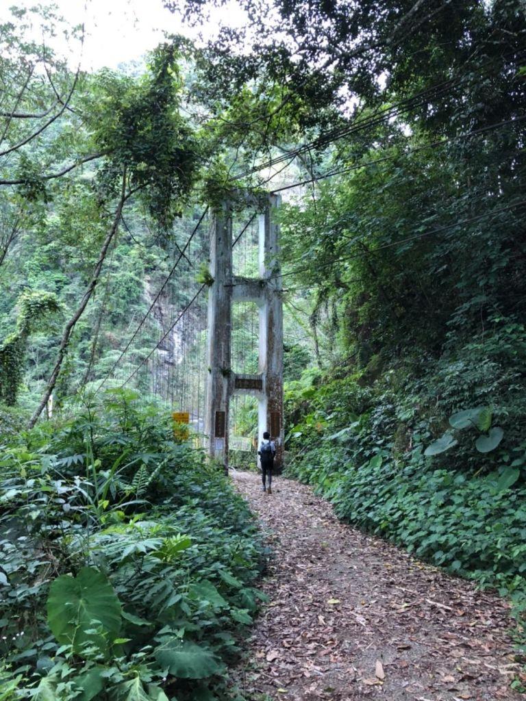 水漾森林一日往返_324533