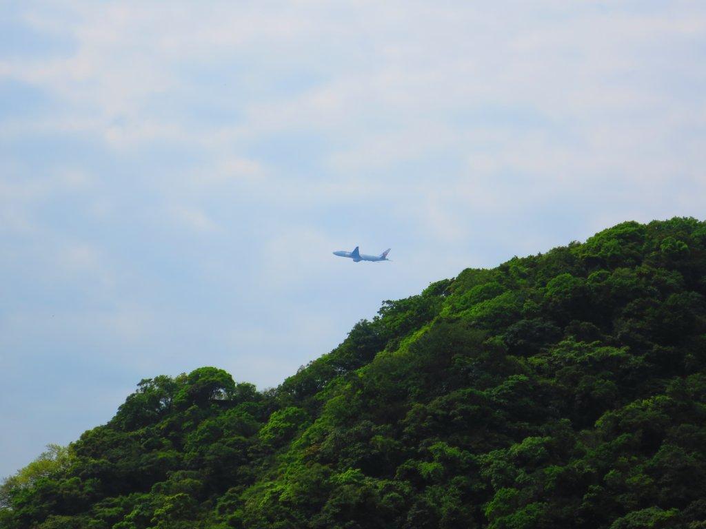 搭著捷運去旅行:內湖白鷺鷥山步道_570139