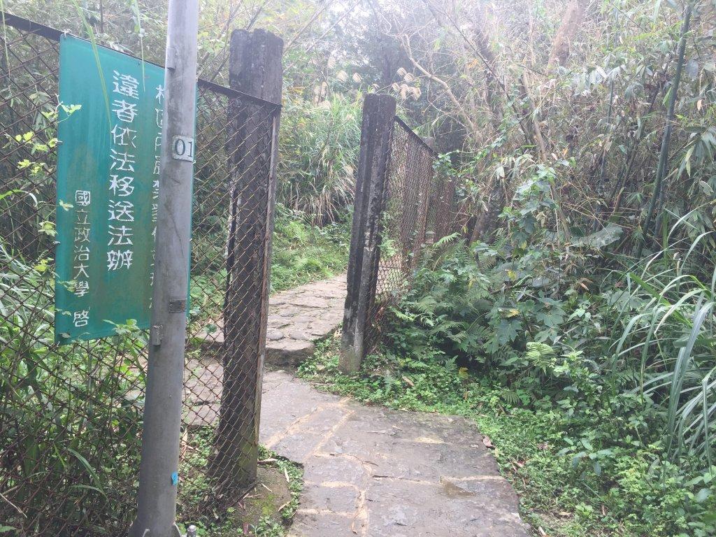 臺北步道大縱走:政大公車站至飛龍步_569468